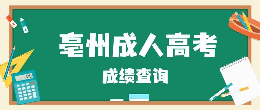亳州成人高考成绩查询流程